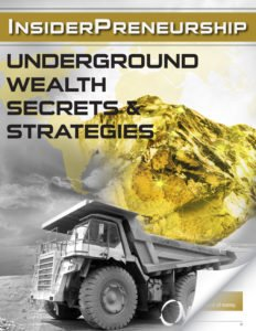 InsiderPreneurship: Underground Wealth Secrets & Strategies