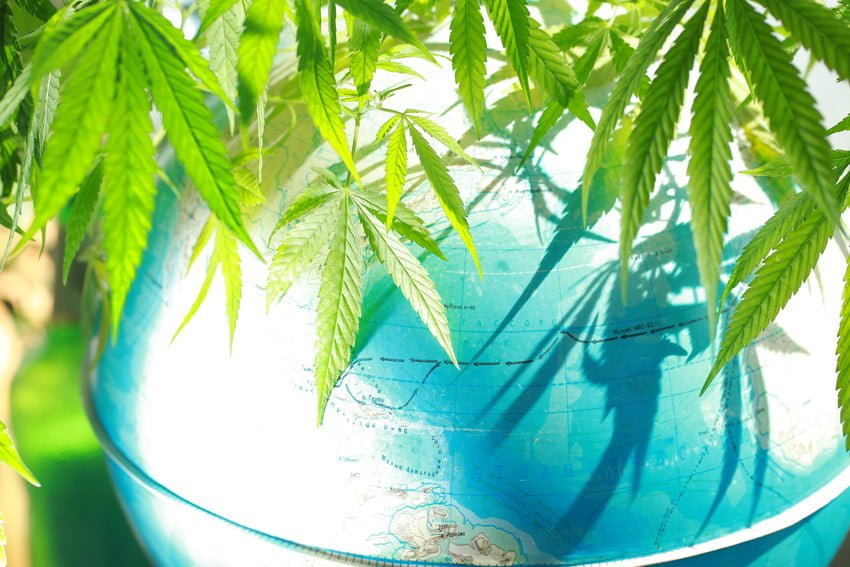 BREAK OUT THE PASSPORT: Cannabis Profits Are Going Overseas!