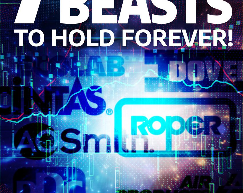 LP(S) – forever